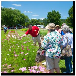 Garden tour during Flower Day 2013