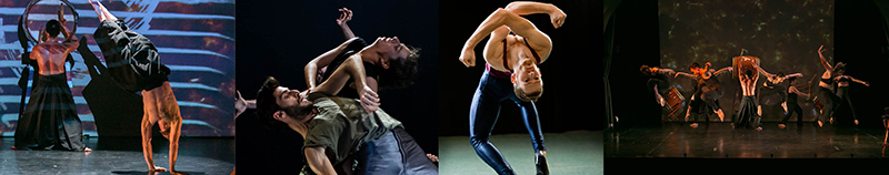 Modern Dance Performance Collage
