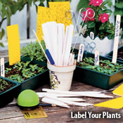 Label Your Plants