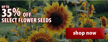 up to 35% OFF Select Flower Seeds -- shop now