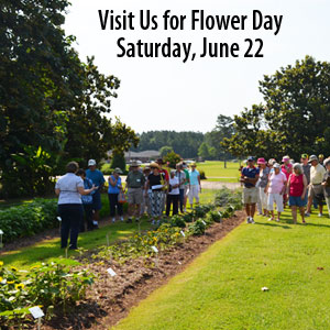 Visist Us for Flower Day Saturday, June 22