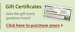 Gift Certificates: Give the gift every gardener loves! Click here to purchase yours
